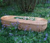 bio coffin